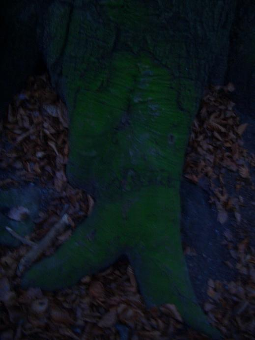 December 06 Blairwitch project (2)