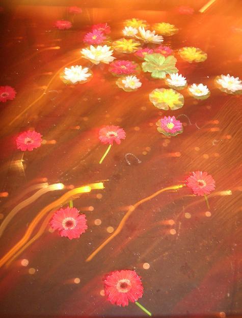 tapis volant de fleurs