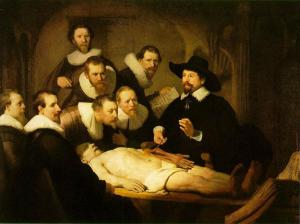 rembrandt dissection