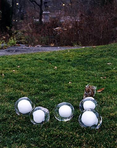 NOT VITAL snowball