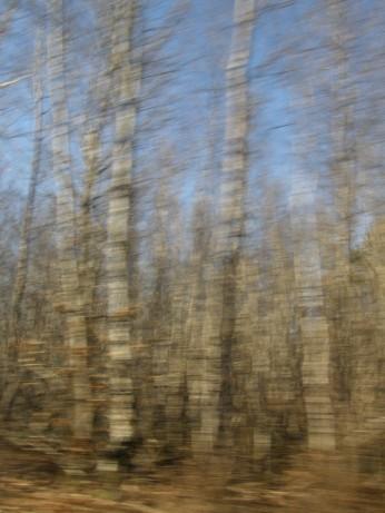 la route - 25 déc 2008