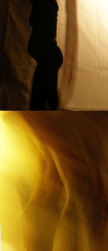 en vie, envies - février & mars 2009