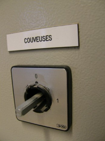 couveuses - 2 Nov 2008