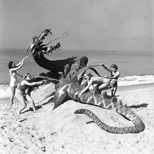 ladies fight the dragon