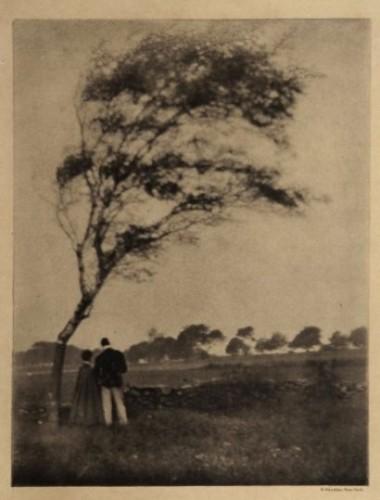 Gertrude Käsebier, Pastoral, 1905.jpg